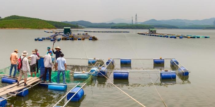 18.5. rybí farmy v okolí Hue / Fish farms aroundHue